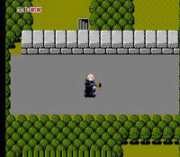 Play Fester's Quest Online