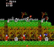 Play Ghosts 'N Goblins Online