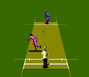 Play International Cricket Online
