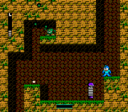 Play Magical Rockman Online