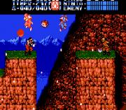 Play Ninja Gaiden II Online