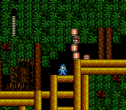 Play Rockman 2 – Gray Zone Online