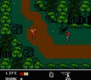 Play Snake's Revenge Online