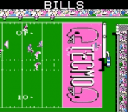 Play Tecmo Super Bowl '04 Roster Online
