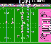 Play Tecmo Super Bowl '07 Roster Online