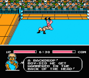 Play Tecmo World Wrestling Online