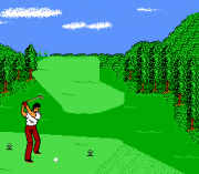 Play The Golf '92 Online