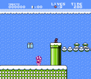 Play Toadette's Christmas Adventure Online
