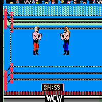 Play WCW World Championship Wrestling Online